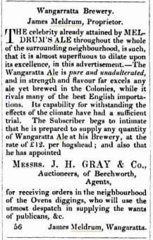 Meldrum's Ale advertisement 1855